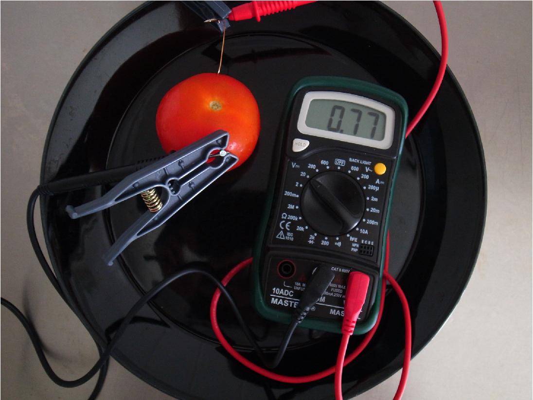Energy Harvesting Experiment Fruit Battery Kamppeet